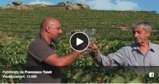 video promozionale toiati isola del giglio giglionews