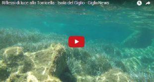 video torricella isola del giglio giglionews