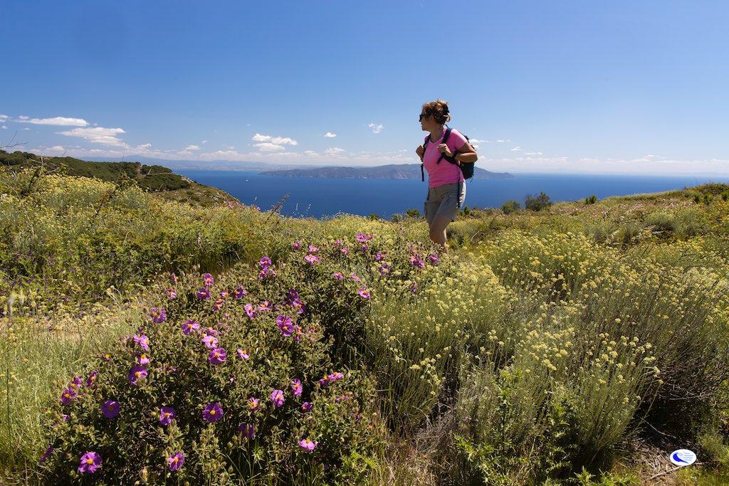 ridi walking festival del camminare parco arcipelago toscano isola del giglio giglionews